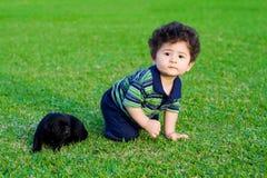 cucciolo del bambino fotografia stock libera da diritti