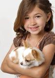 Cucciolo della chihuahua della holding della ragazza di Ittle Fotografia Stock