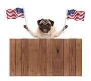Cucciolo di cane del carlino con la bandiera nazionale americana di U.S.A. e del recinto di legno Fotografie Stock Libere da Diritti
