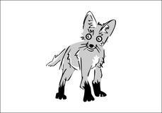 Cucciolo di Fox Fotografie Stock Libere da Diritti
