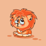 Cucciolo di leone sconcertante Fotografie Stock Libere da Diritti