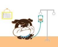 Cucciolo di malattia all'ospedale del cane Fotografia Stock Libera da Diritti