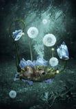 Cucciolo di orso in una culla dei fiori Forest Fairy Tale Fotografie Stock Libere da Diritti