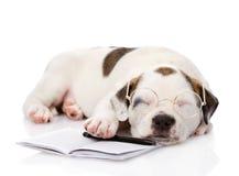 Cucciolo di sonno con la penna ed il taccuino Isolato sul backgrou bianco Fotografia Stock Libera da Diritti