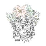 Cucciolo divertente in una corona del fiore Illustrazione di vettore Yorkshire terrier illustrazione vettoriale