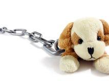 Cucciolo e circuito molli del giocattolo sopra Fotografia Stock