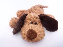 Cucciolo sveglio Fotografie Stock