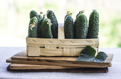 Cuccumbers in basket. Fresh cucumbers in basket with cucumber leaf Stock Photo