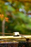 Cucharón de bambú Fotos de archivo libres de regalías