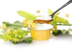Cuchara con la miel y la rama floreciente del tilo fotos de archivo