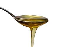 Cuchara de la miel Foto de archivo libre de regalías