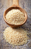 Cuchara de las semillas del amaranto Foto de archivo