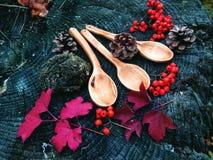 Cuchara de madera tallada en la madera, artesanía en madera, colores del otoño Fotos de archivo libres de regalías
