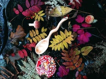 Cuchara de madera tallada en la madera, artesanía en madera, colores del otoño Imágenes de archivo libres de regalías