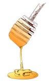 Cuchara dibujada mano de la miel Vector en el bosquejo blanco Foto de archivo