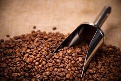 Cucharada de acero en granos de café Fotos de archivo libres de regalías