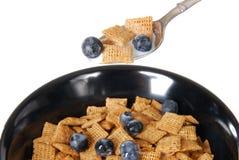 Cucharada de cereal Imagenes de archivo