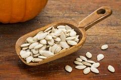Cucharada de las semillas de calabaza Fotografía de archivo libre de regalías
