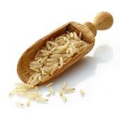 Cucharada de madera con arroz moreno Fotos de archivo libres de regalías
