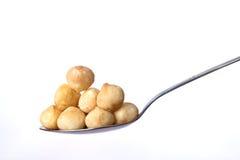 Cucharada de tuercas de macadamia Imagen de archivo libre de regalías