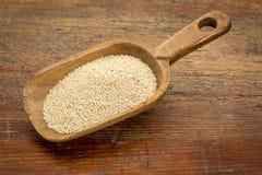 Cucharada del grano del amaranto Foto de archivo libre de regalías