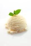 Cucharada del helado y de la menta de la vainilla Fotografía de archivo libre de regalías