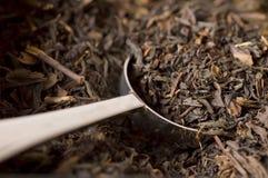 Cucharada del té Fotografía de archivo libre de regalías