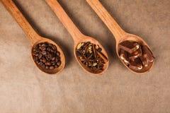 Cucharas de madera con las especias del postre Foto de archivo libre de regalías