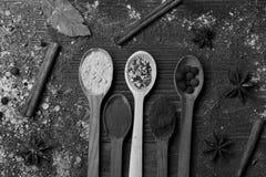 Cucharas de madera con paprika, cúrcuma, las hierbas secas, el polvo del canela, las bolas de la pimienta negra y el anís Composi Fotografía de archivo