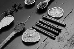 Cucharas de madera con paprika, cúrcuma, las hierbas y la pimienta por el canela, el anís, la rebanada anaranjada seca y el chile Imágenes de archivo libres de regalías