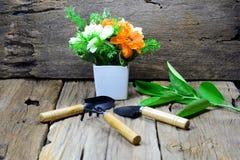 cucharas y bifurcación para cultivar un huerto, florero blanco Foto de archivo