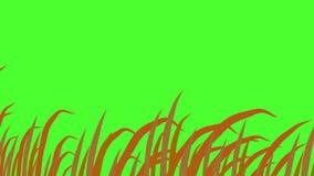 Cuchillas de la hierba, sacudi?ndose en el viento, fondo de pantalla verde, animaci?n 3d stock de ilustración