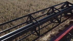 Cuchillas de la trilladora que cortan troncos de oro maduros del centeno en el cierre del campo de granja almacen de video