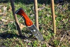 Cuchillo de acero agudo de la supervivencia pegado en la tierra foto de archivo libre de regalías