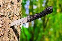 Cuchillo en un árbol Fotos de archivo libres de regalías
