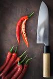 Cuchillo japonés con el chile Fotos de archivo libres de regalías
