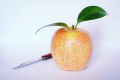 Cuchillo y manzana de la fruta Imagen de archivo