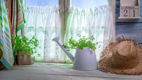 Cucina della primavera completamente… Fotografia Stock