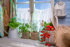 Cucina della primavera in pieno delle verdure e delle erbe Immagine Stock