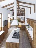Cucina di lusso moderna in uno stile del sottotetto Fotografie Stock Libere da Diritti