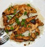 Cucina gastronomica del riso e del pollo Fotografia Stock Libera da Diritti