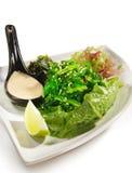 Cucina giapponese - insalata dell'alga fotografie stock libere da diritti