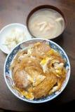 Cucina giapponese, Katsudon Fotografia Stock