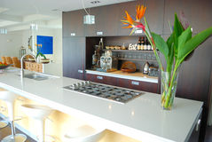 Cucina moderna del progettista Fotografie Stock