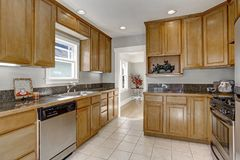 Cucina piacevolmente aggiornata con i lotti dei gabinetti di stoccaggio Fotografia Stock