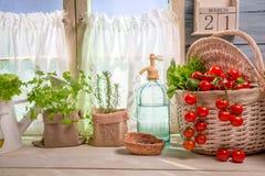 Cucina soleggiata in pieno delle verdure e delle erbe Fotografie Stock Libere da Diritti
