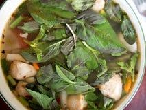 Cucina tailandese ed alimento caldi e piccanti Immagini Stock