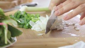 Cucinando e tagliando le verdure stock footage