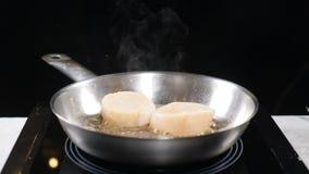 Cucinando frutti di mare in ristorante al rallentatore Cottura dell'alimento del ristorante Pettini che sono fritti con il vapore archivi video
