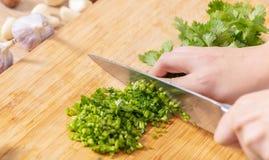 Cucini il coriandolo verde tagliato immagine stock
